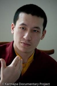 Ethique et société (enseignement du Dalaï Lama et mise en perspective du livre L'élégance naturelle) dans bouddhisme tibétain 3e1eba30c0-199x300